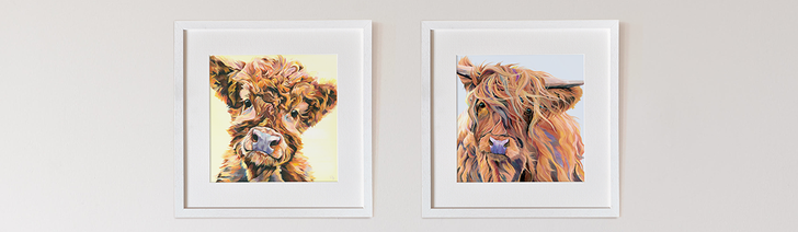 Highland Cow Art Print's