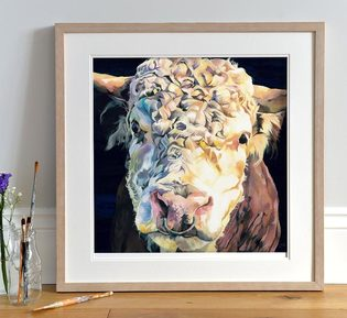 Limited Edition Hereford Bull Art