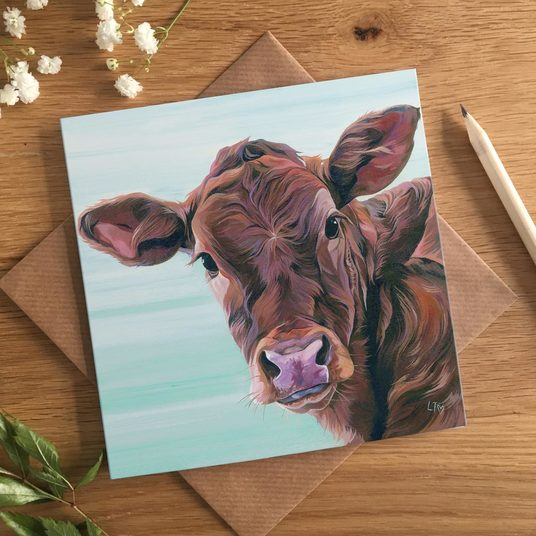 Calf Birthday Card