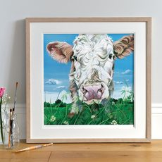 Framed Simmental Cattle painting
