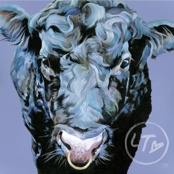 Black Angus Bull painting by Lauren Terry