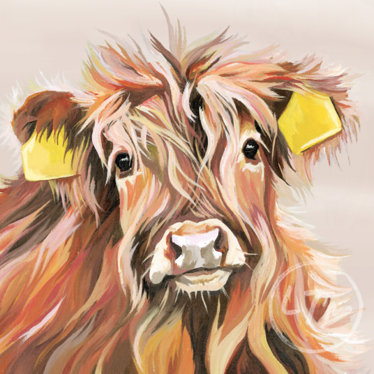 Highland Calf Art print for Baby's Room