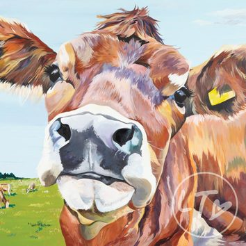 A golden Jersey Cow limited edition print with tones of purple and pink