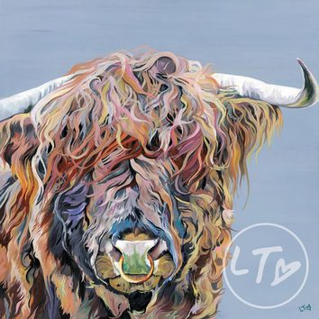 Axel Junior a highland bull with nose ring,print full of colour