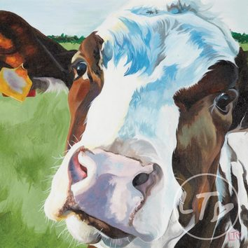 A quizzical dairy cow print by Lauren's Cows