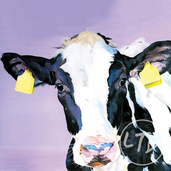 Minnie, a friesian calf print with lilac background by Lauren's Cows