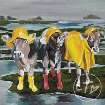 Three cows in the rain wearing sou'westes and wellington boots