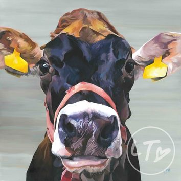 'Showtime' a characterful jersey cow by Lauren's Cows