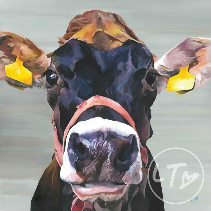 Show Time, a characterful jersey cow print with grey background