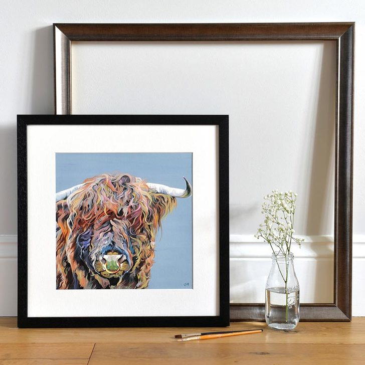 Framed print of Highland Bull with nose ring 'Axel Junior'
