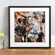 Framed limited edition print of Highland Cow with tongue out