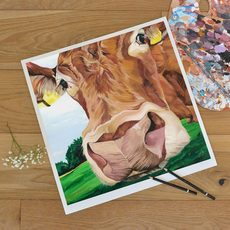 Limousin cattle painting signed and numbered by Lauren Terry