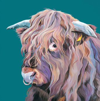 Painting of Archie the Countryfile Highland Bull