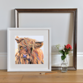 Lifestyle photo of a Framed Scarlett print by Lauren's Cows