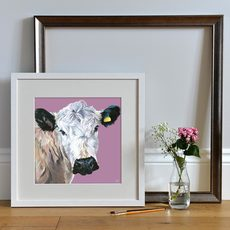 Lifestyle photo of an unmounted print of a British White Cow