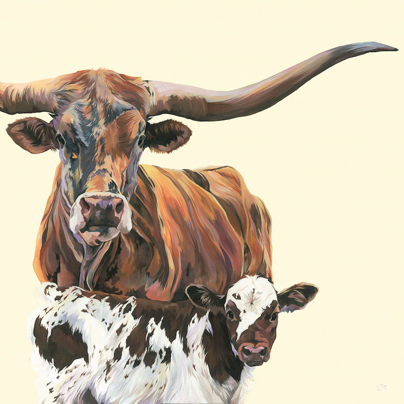 Original Acrylic Painting of a Texas Longhorn Cow and Calf by British artist Lauren Tery