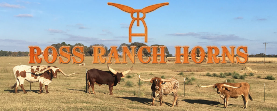 Lauren's Cows welcomes Ross Ranch Horns