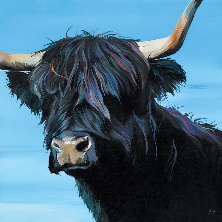 Tina, Black Highland Cow print by Lauren's Cows