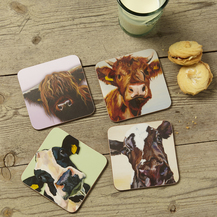Cattle Coasters