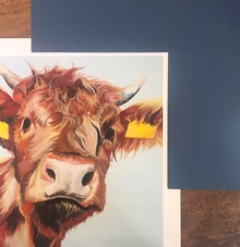 Highland Cow Art by Lauren Terry