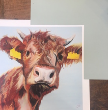 Colourful Highland Cow Art by Lauren Terry