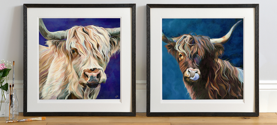 Artist Lauren Terry photographing Highland Cattle