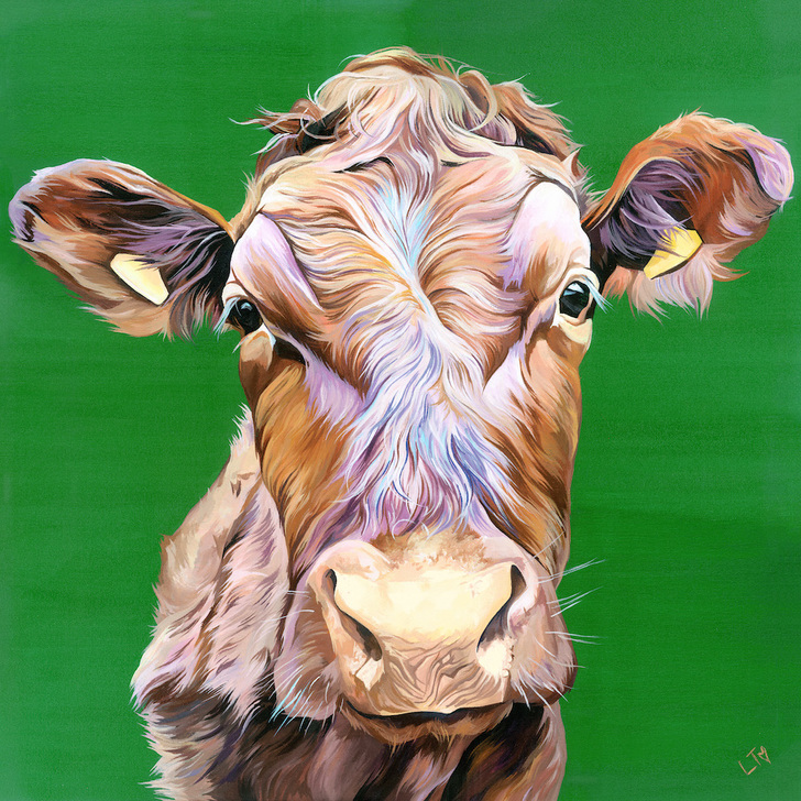 Copper, colourful cow painting of a Limousin Bullock